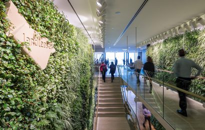 Why green offices boost productivity